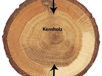 Kernholz